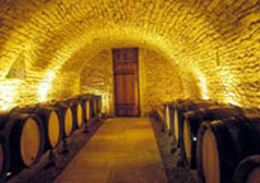 Visiting the wine cellars